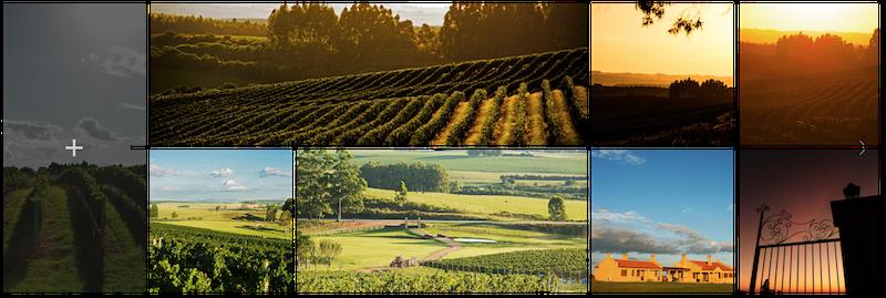 Bueno Wines — Vinícola Bellavista