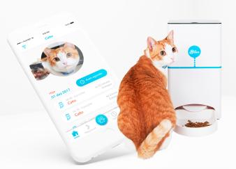 4-gato_produtos_app