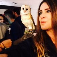Encontro de animais exóticos movimenta fim de semana em Curitiba