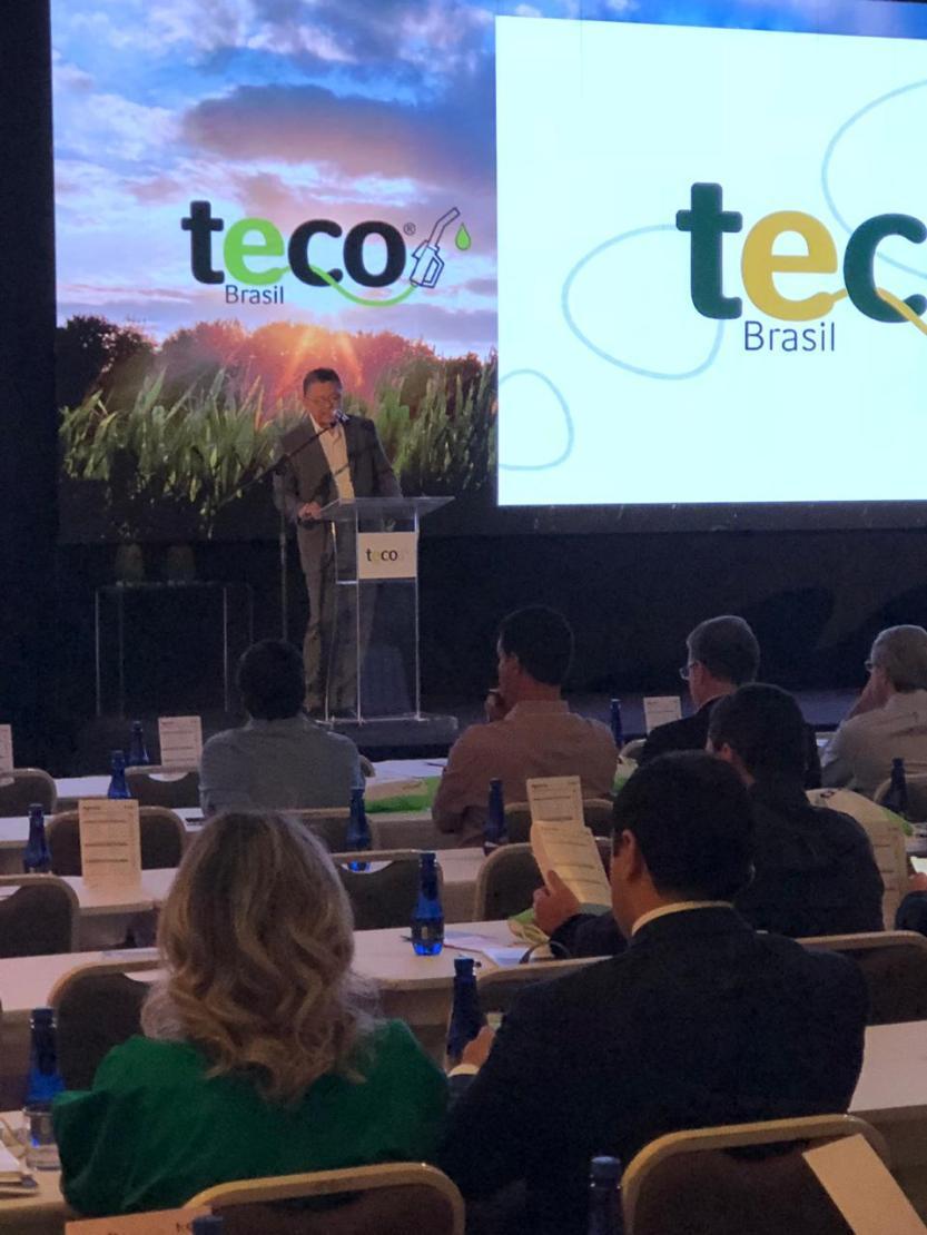 Teco Brasil 2