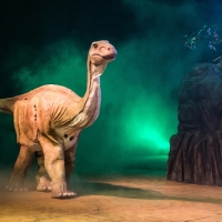 DINOS EXPERIENCE EM CURITIBA