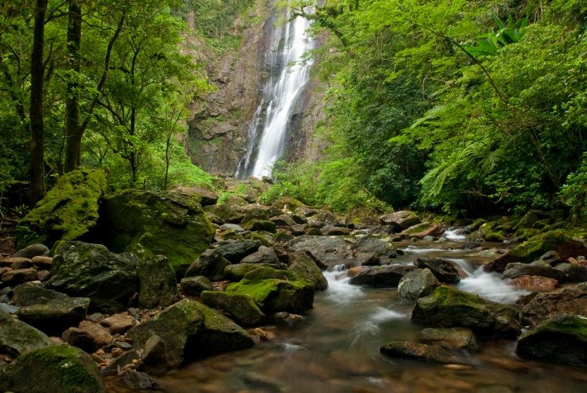Reserva Natural Salto Morato, Guaraquecaba, Parana, Brasil, foto de Ze Paiva, Vista Imagens.