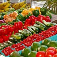 Feira de hortifrúti da Abrasel vai incentivar a agricultura familiar em Curitiba