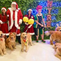Fábricade Presentesdo Noel está encantando o público no Shopping Curitiba