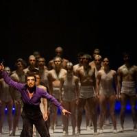 PalcoParaná seleciona bailarinos, ensaiador e professor de dança para o Balé Teatro Guaíra