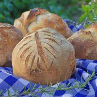 Curitiba Honesta - Faça o seu pedido dos pães artesanais de fermentação natural
