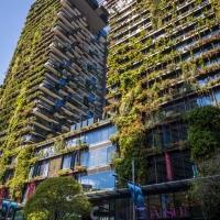 Semana do Meio Ambiente: Tendência futurista, construções sustentáveis reforçam importância de preservar o meio ambiente
