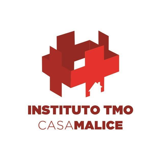 Instituto TMO logo 800x600