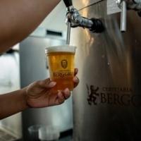 Cerveja: descubra como a bebida trazida pelos portugueses caiu no gosto dos brasileiros