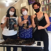 Perfumarias oferecem cortes de cabelo gratuitos para quem quiser doar