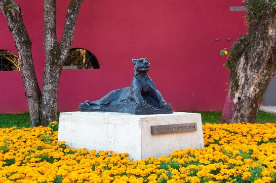 Memorial-Paranista-João-Turin---foto-Maringas-Maciel-(1)