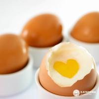 Um único ovo tem mais de 50 nutrientes e inúmeros benefícios para a saúde
