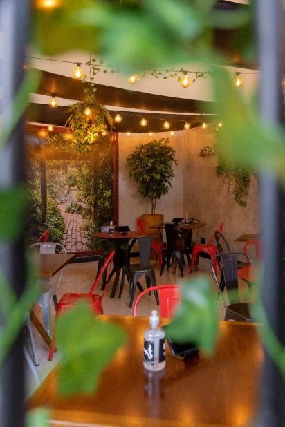 Jardim Boi and Beer 2