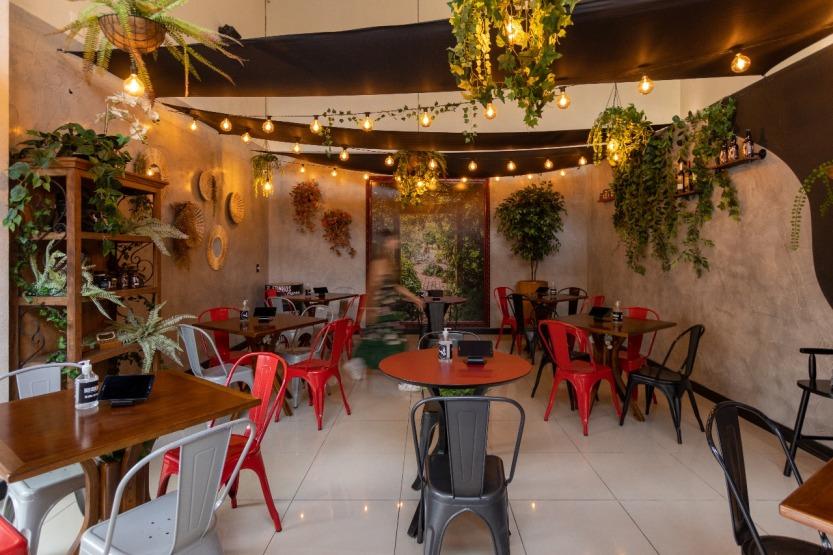 Jardim Boi and Beer 4